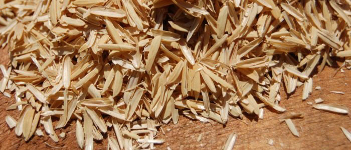 Rice Hulls Photo